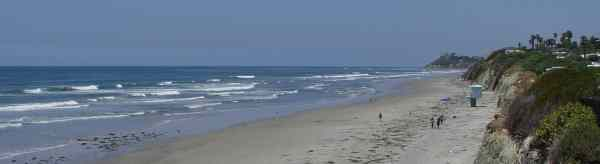 Cardiff Beach