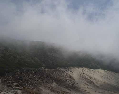 Fog On Dunes