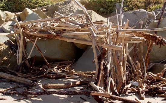 Robinson Crusoe Shack